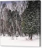 Winter Postcard Canvas Print