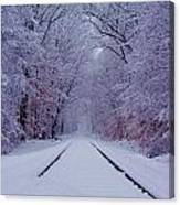 Winter Rails Canvas Print