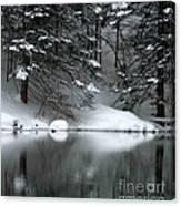 Winter Reflection 004 Canvas Print