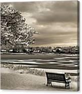 Winter Rest Canvas Print