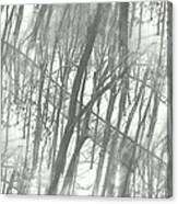 Winter Road Dream Canvas Print
