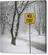 Winter Road During Snowfall IIi Canvas Print