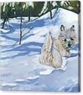 Winter Romp Canvas Print