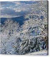 Winter Scene At Berry Summit Canvas Print