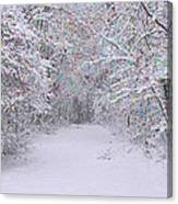 Winter Scene With Lights Canvas Print