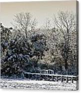 Winter Scenes Canvas Print