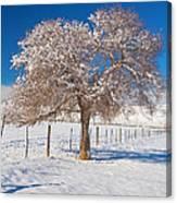 Winter Season On The Plains Portrait Canvas Print