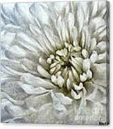 Winter Shade Of Pale Canvas Print