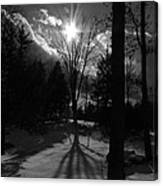 Winter Shadow Canvas Print