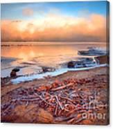 Winter Shore Canvas Print