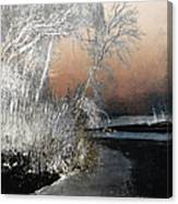 Winter Shroud Canvas Print