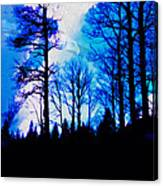 Winter Silhouettes - Ghost Eagle Canvas Print
