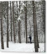 Winter Ski Canvas Print