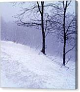 Winter Slope Canvas Print