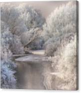 Winter Song Canvas Print