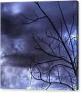 Winter Storm 2 Canvas Print