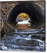 Winter Stream Media Canvas Print