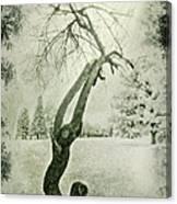 Winter Survivor Canvas Print