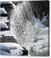 Winter Thaw Canvas Print
