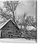 Winter Thoughts Monochrome Canvas Print