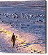 Winter Time At The Beach Canvas Print