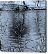 Winter Touch Canvas Print
