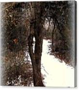 Tree With Ice Canvas Print
