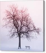 Winter Tree In Fog At Sunrise Canvas Print