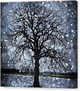 Winter Tree In Snowfall Canvas Print