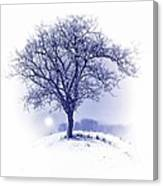 Winter Tree On Hill  Canvas Print