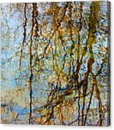 Winter Tree Reflections Canvas Print
