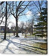 Winter Tree Shadows Canvas Print