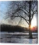 Winter Tree Sunset Canvas Print