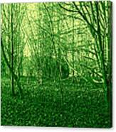 Winter Trees Green Canvas Print
