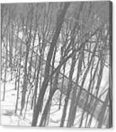 Winter Urban Wood Canvas Print