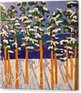 Winter Valley Canvas Print