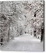Winter Walk In Fairytale  Canvas Print