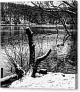 Winter Waterscape Canvas Print