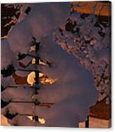 Winter Whirligig Canvas Print