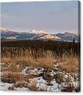 Winter Wilderness Landscape Yukon Territory Canada Canvas Print
