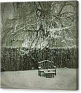 Winter Willow And Snow Covered Seat Canvas Print