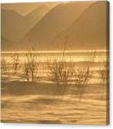 Winter Wind Storm W Blowing Snow Canvas Print