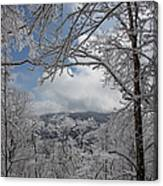 Winter Window Wonder Canvas Print