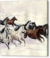 Winter Wishperer Canvas Print