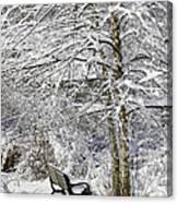 Winter Wonderland 9 Canvas Print