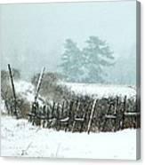 Winter Wonderland - Amazing Winter Landscape With Snow Falling Canvas Print