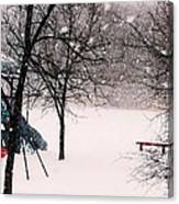 Winter Wonderland In Park Canvas Print