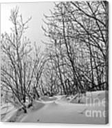Winter Wonderland Monochrome Canvas Print
