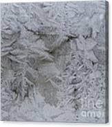 Winter Wonderland Series #01 Canvas Print