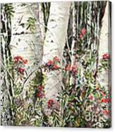 Winter Wood Jpg Canvas Print